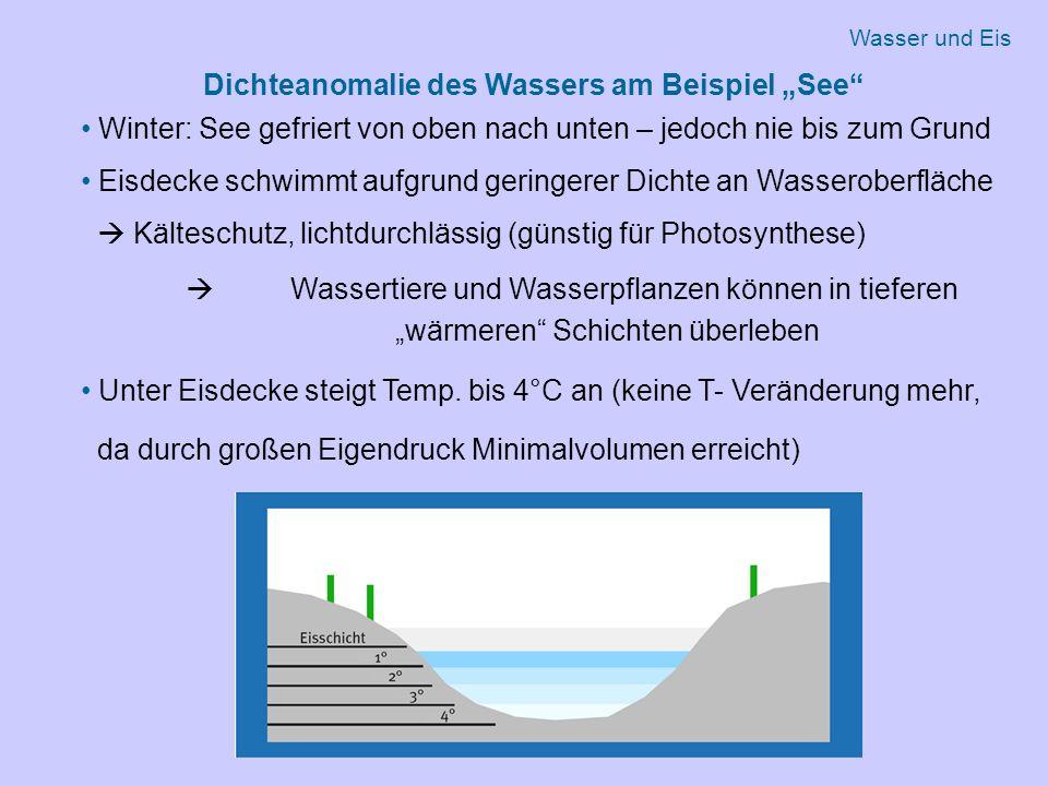 """Dichteanomalie des Wassers am Beispiel """"See"""