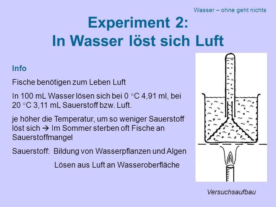 Experiment 2: In Wasser löst sich Luft