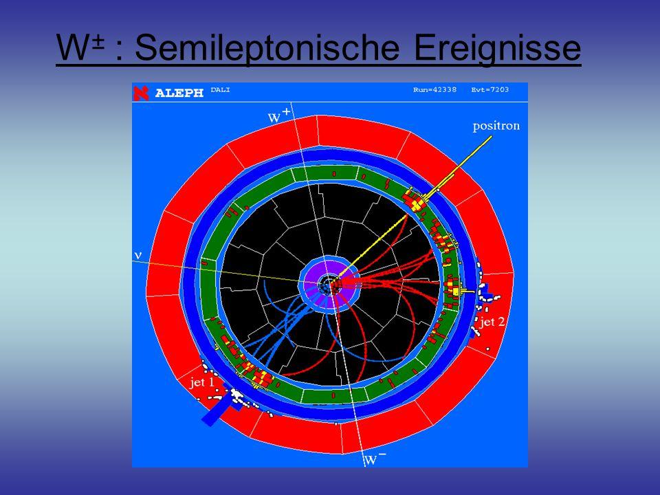 W± : Semileptonische Ereignisse