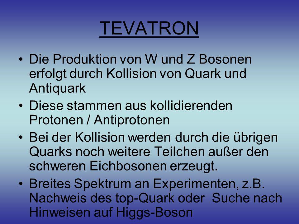 TEVATRON Die Produktion von W und Z Bosonen erfolgt durch Kollision von Quark und Antiquark.