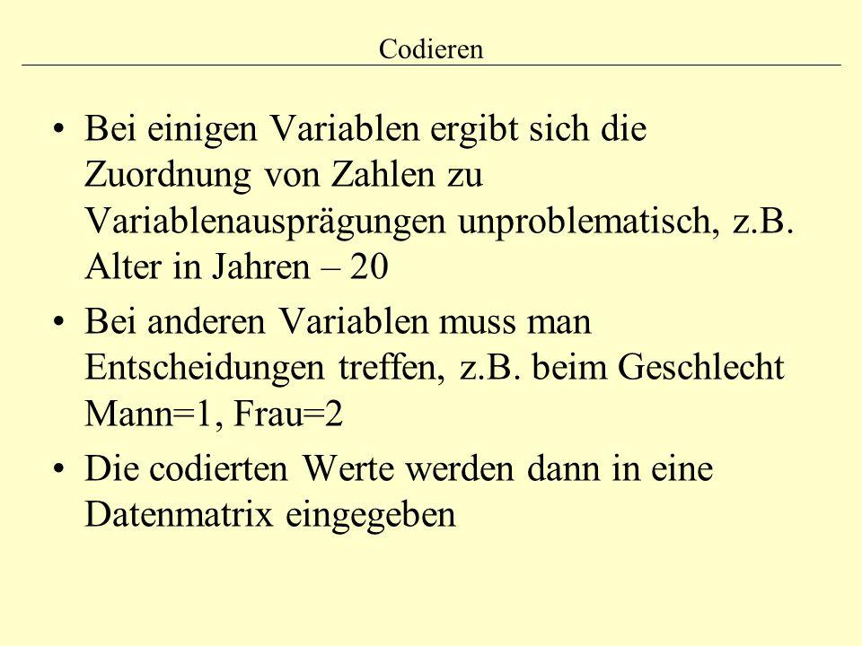 Die codierten Werte werden dann in eine Datenmatrix eingegeben