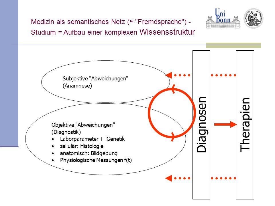 Diagnosen Therapien Medizin als semantisches Netz ( Fremdsprache ) -