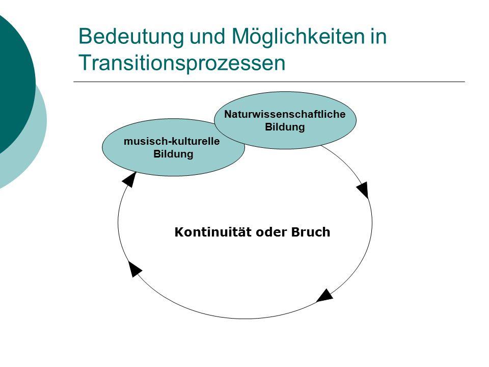 Bedeutung und Möglichkeiten in Transitionsprozessen