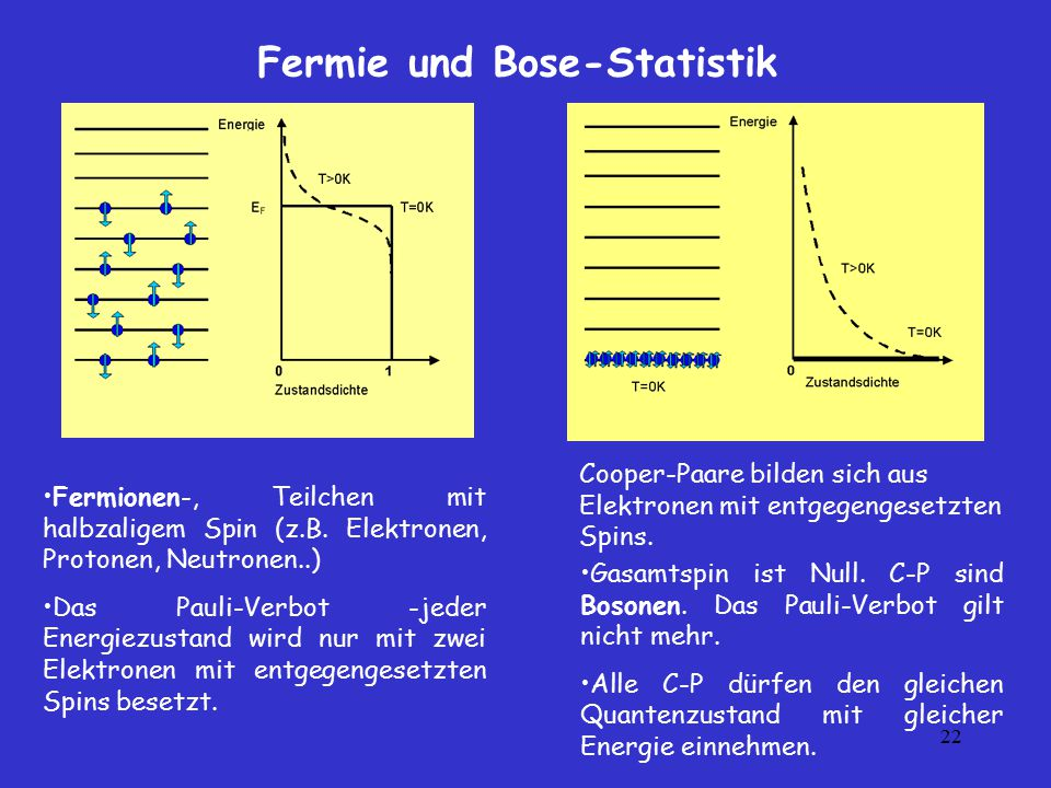 Fermie und Bose-Statistik