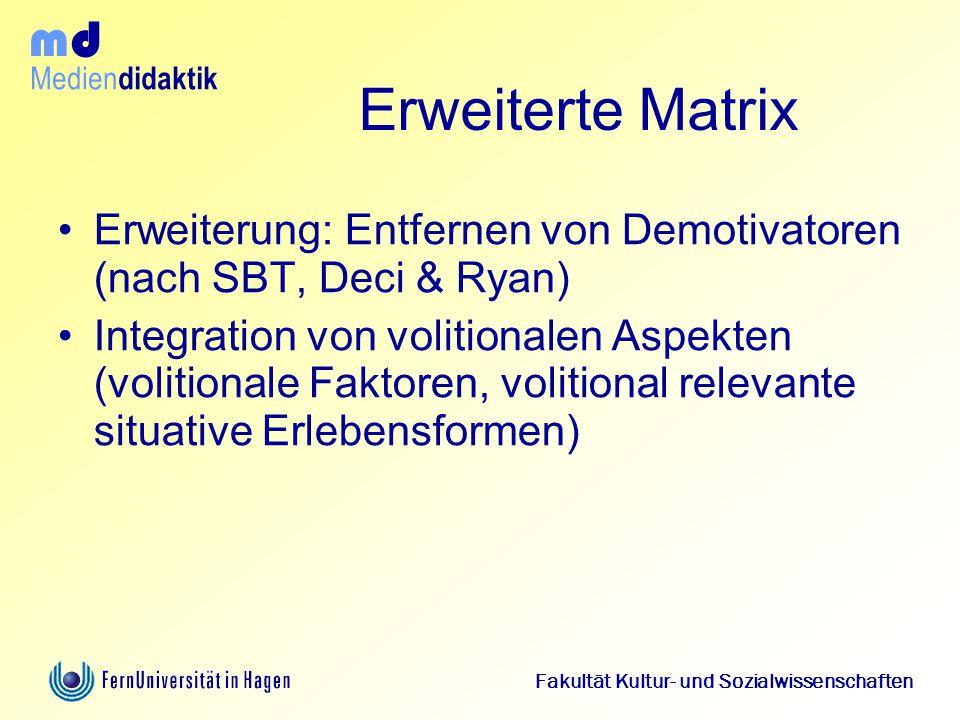 Erweiterte Matrix Erweiterung: Entfernen von Demotivatoren (nach SBT, Deci & Ryan)