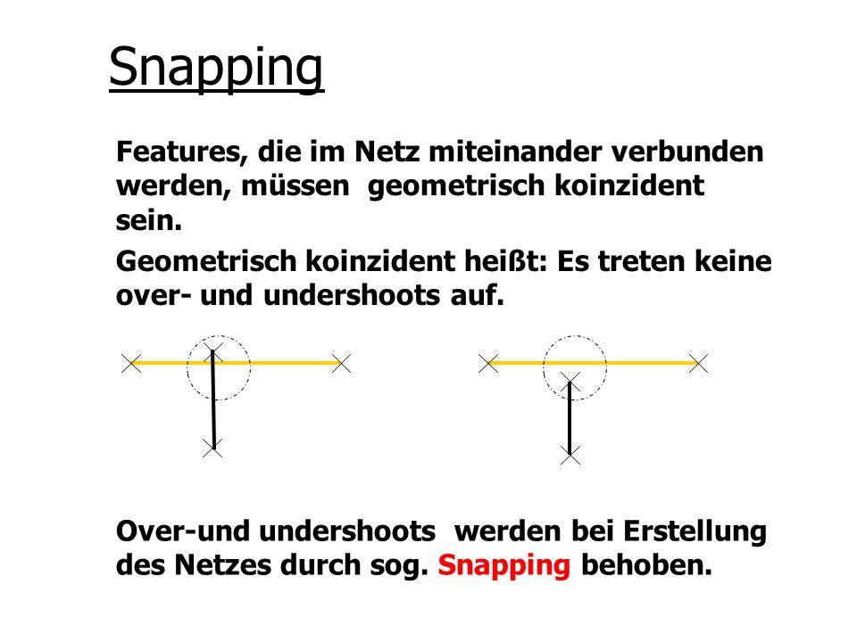 Snapping Features, die im Netz miteinander verbunden werden, müssen geometrisch koinzident sein.