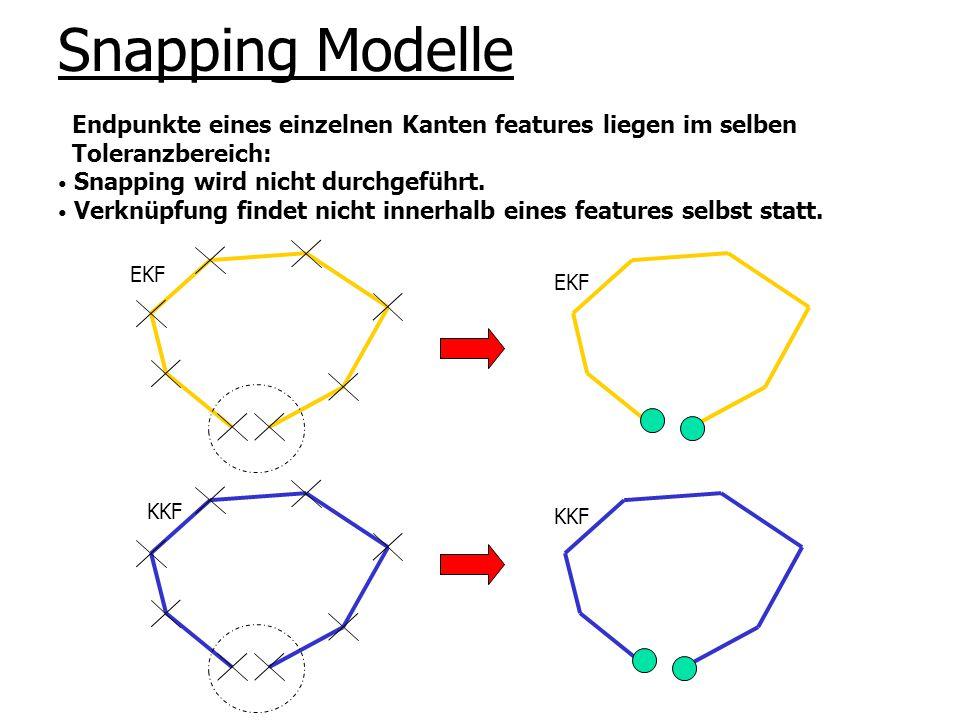 Snapping Modelle Endpunkte eines einzelnen Kanten features liegen im selben. Toleranzbereich: Snapping wird nicht durchgeführt.