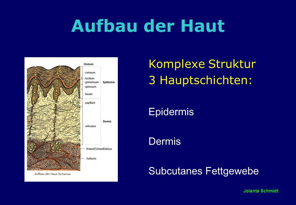 Aufbau der Haut Komplexe Struktur 3 Hauptschichten: Epidermis Dermis