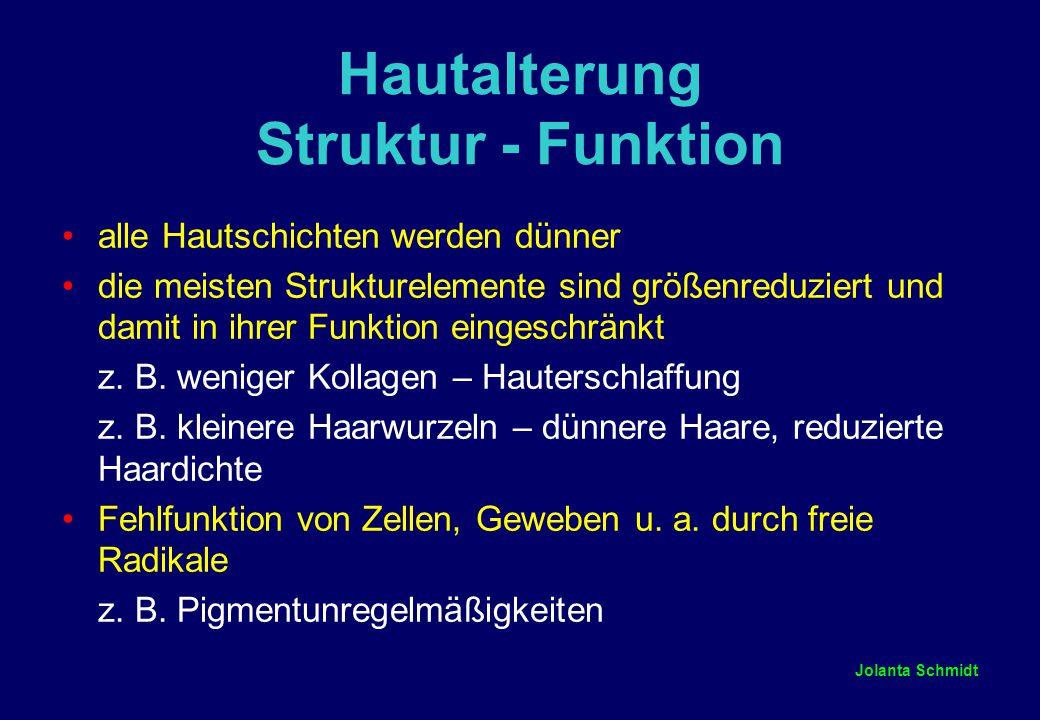Hautalterung Struktur - Funktion