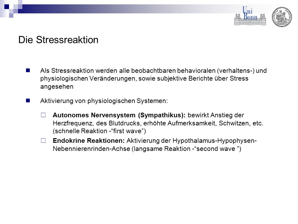 Die Stressreaktion