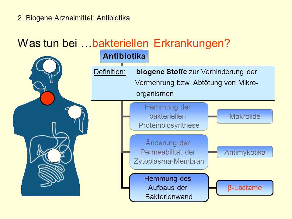 2. Biogene Arzneimittel: Antibiotika Was tun bei …bakteriellen Erkrankungen