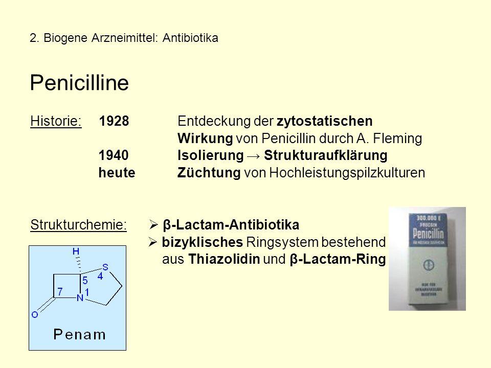 2. Biogene Arzneimittel: Antibiotika Penicilline