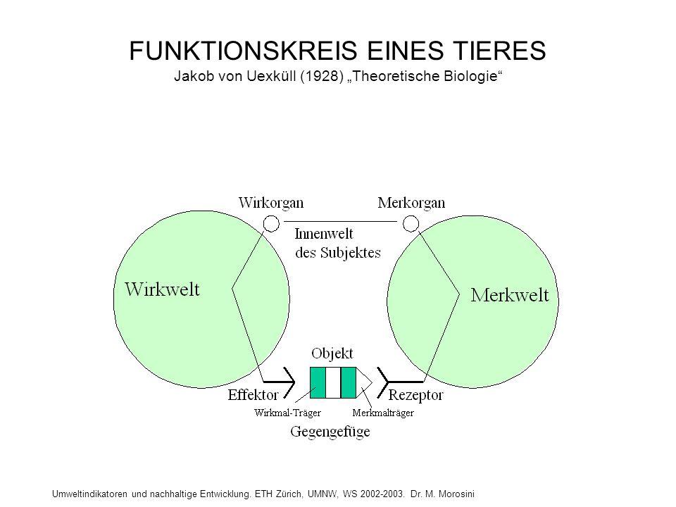"""FUNKTIONSKREIS EINES TIERES Jakob von Uexküll (1928) """"Theoretische Biologie"""