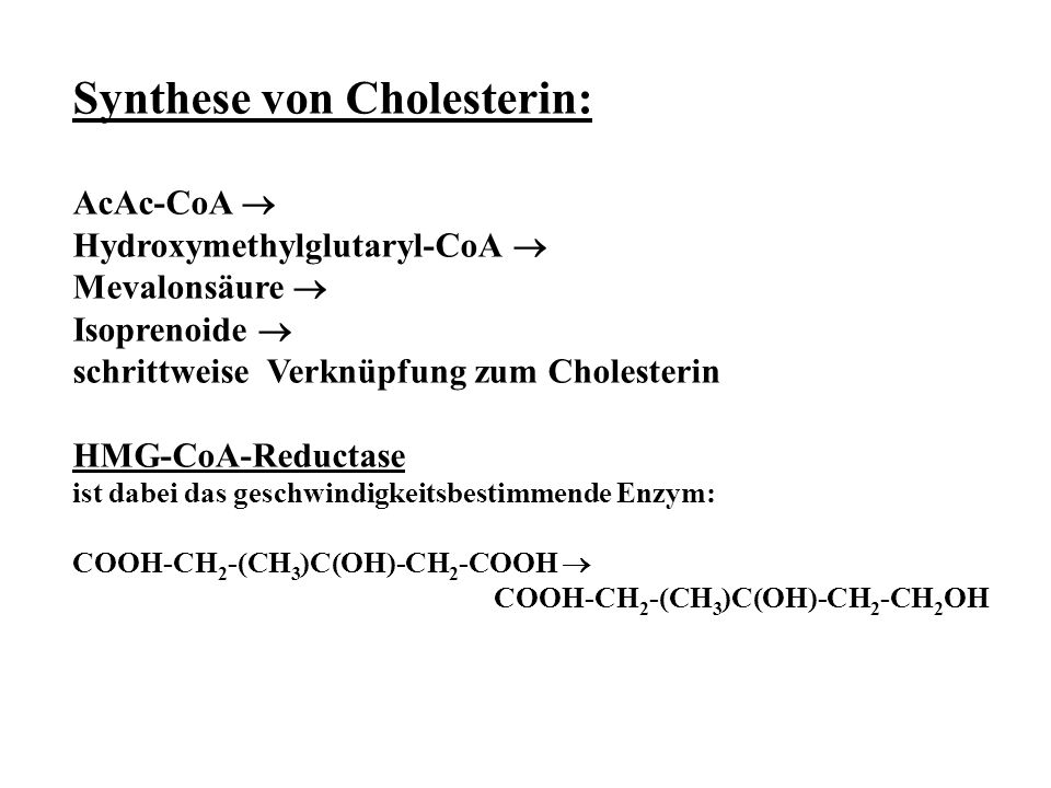 Synthese von Cholesterin: