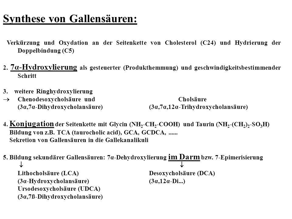 Synthese von Gallensäuren: