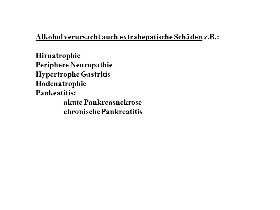 Alkohol verursacht auch extrahepatische Schäden z.B.: