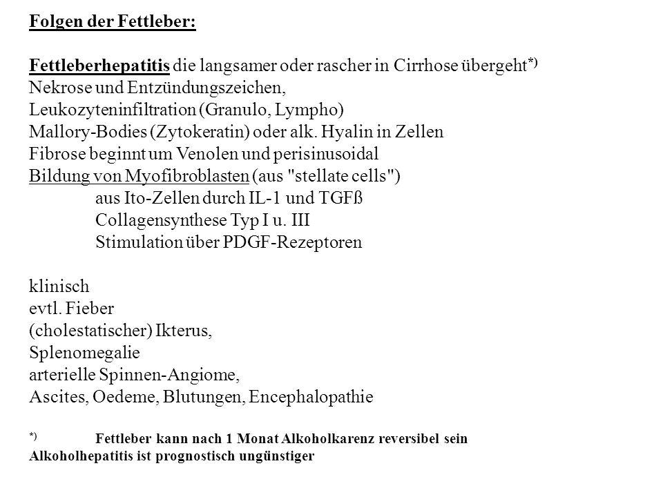 Fettleberhepatitis die langsamer oder rascher in Cirrhose übergeht*)