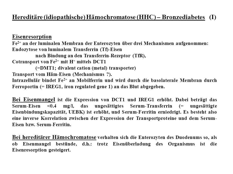 Hereditäre (idiopathische) Hämochromatose (HHC) – Bronzediabetes (I)