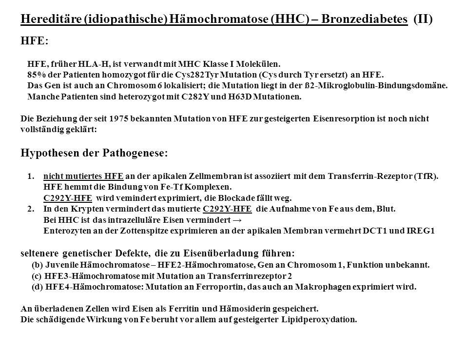 Hereditäre (idiopathische) Hämochromatose (HHC) – Bronzediabetes (II)