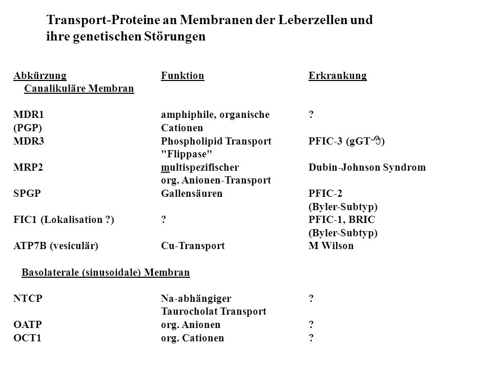 Transport-Proteine an Membranen der Leberzellen und