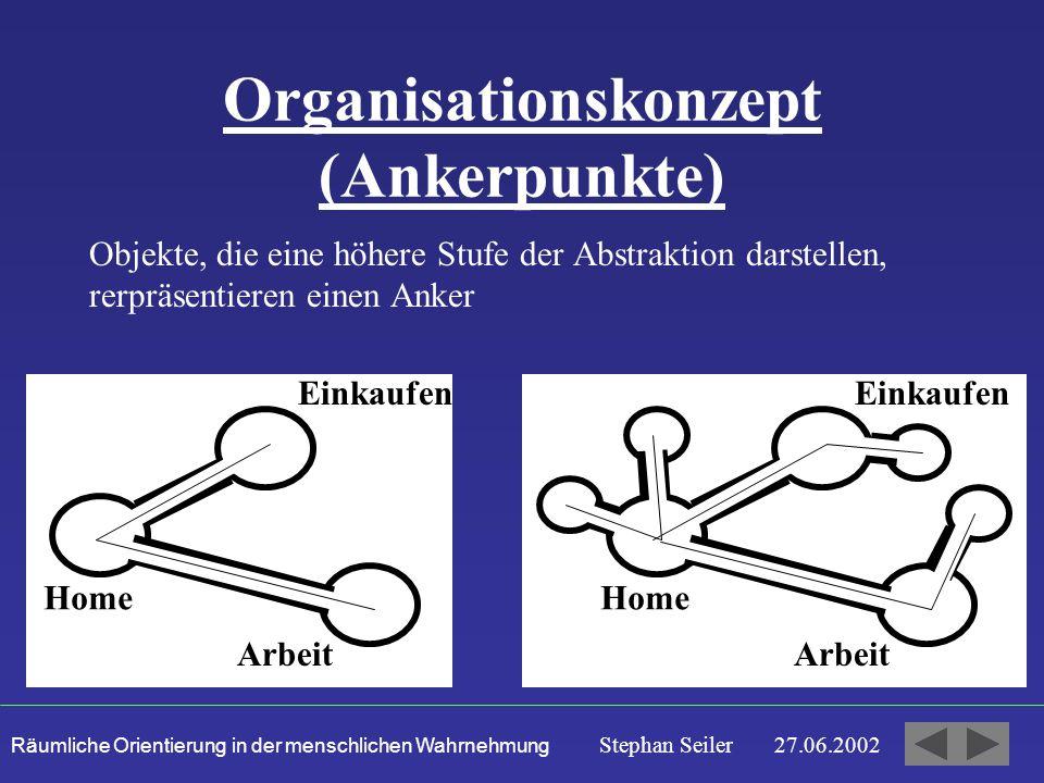 Organisationskonzept (Ankerpunkte)