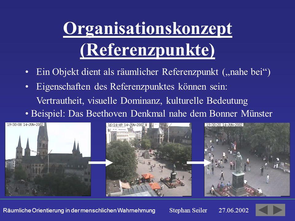 Organisationskonzept (Referenzpunkte)