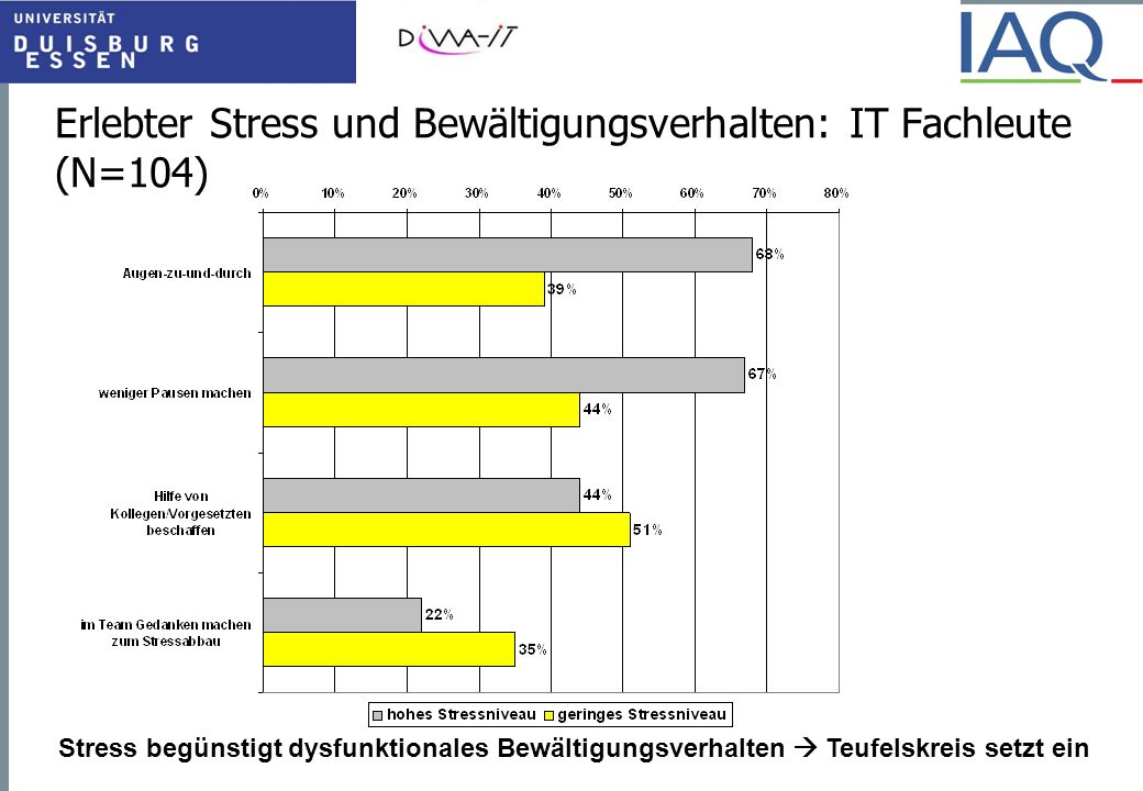 Erlebter Stress und Bewältigungsverhalten: IT Fachleute (N=104)