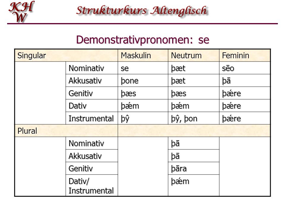 Demonstrativpronomen: se
