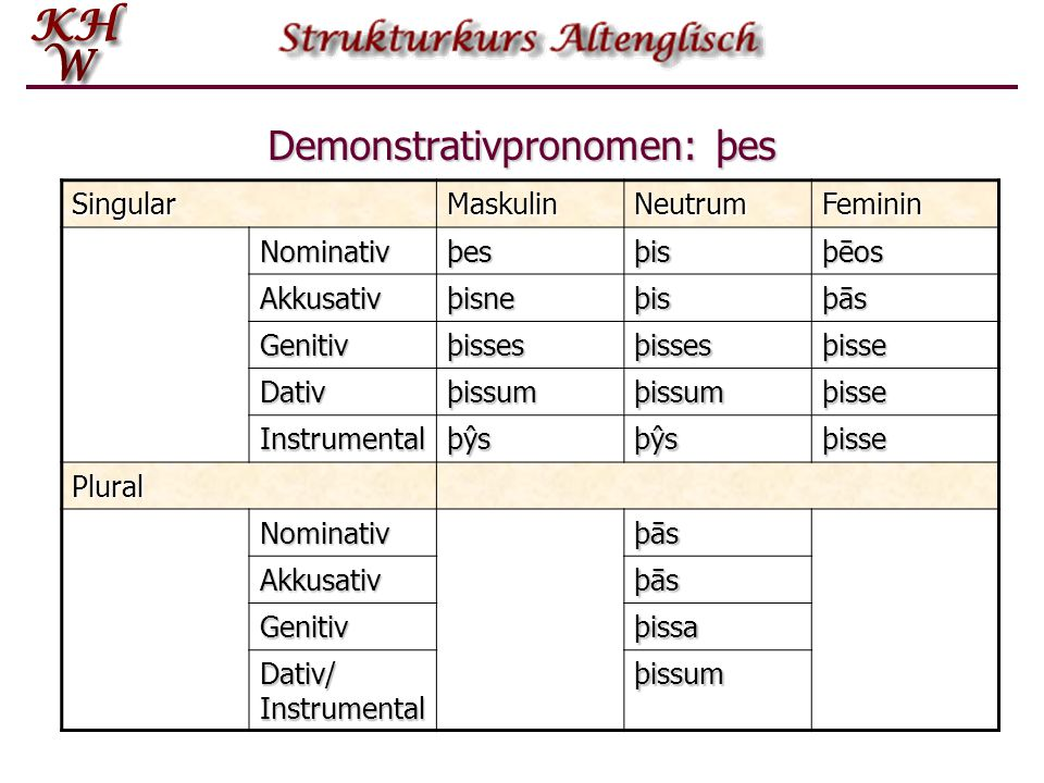 Demonstrativpronomen: þes
