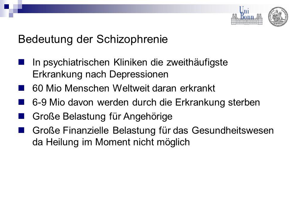 Bedeutung der Schizophrenie