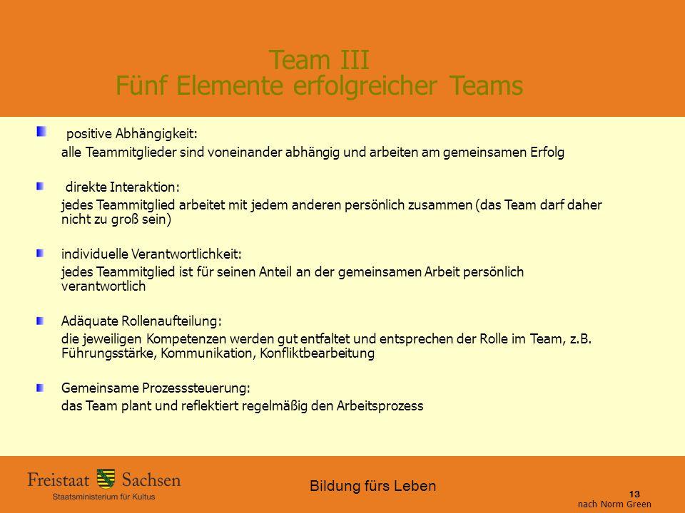 Team III Fünf Elemente erfolgreicher Teams
