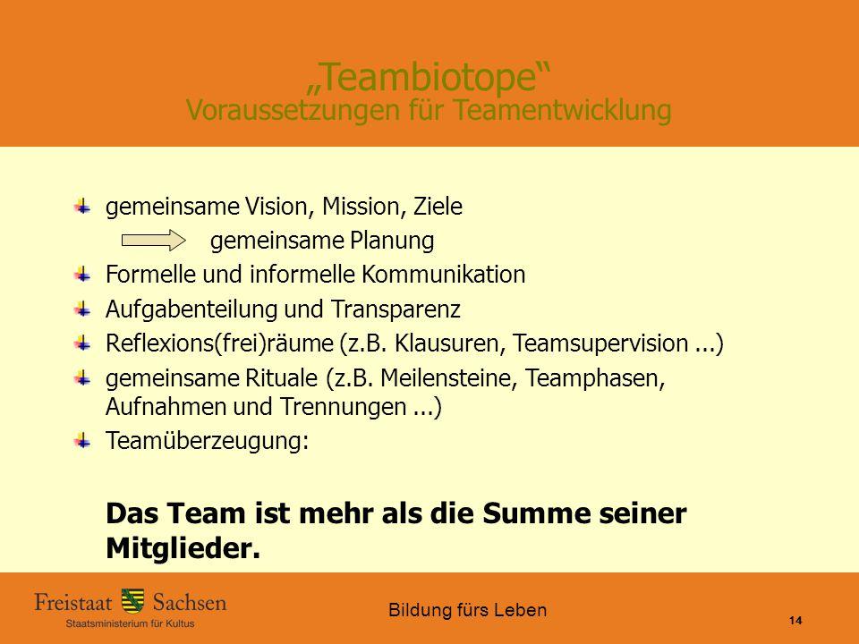 """""""Teambiotope Voraussetzungen für Teamentwicklung"""