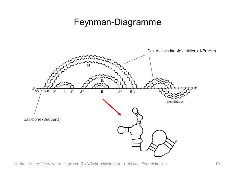 Feynman-Diagramme Sekundästruktur-Interaktion (H-Brücke)
