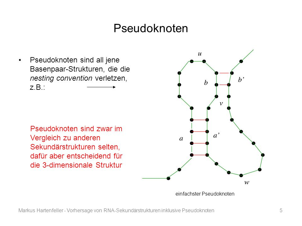 Pseudoknoten Pseudoknoten sind all jene Basenpaar-Strukturen, die die nesting convention verletzen, z.B.: