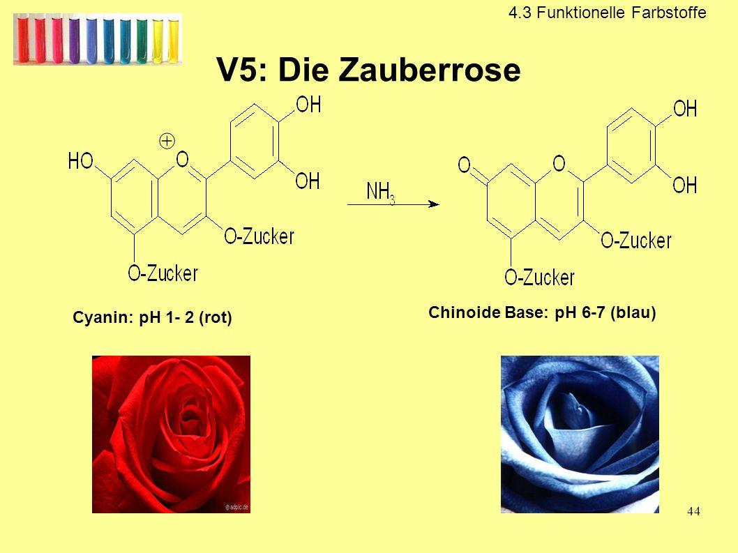 V5: Die Zauberrose 4.3 Funktionelle Farbstoffe