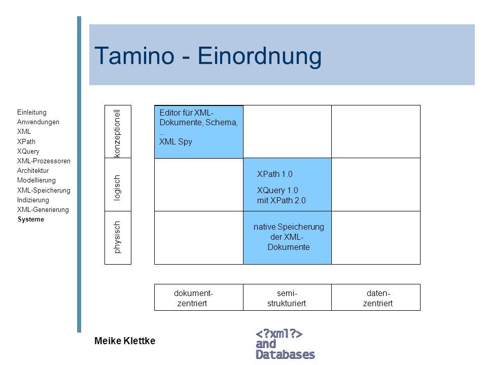 Tamino - Einordnung Meike Klettke