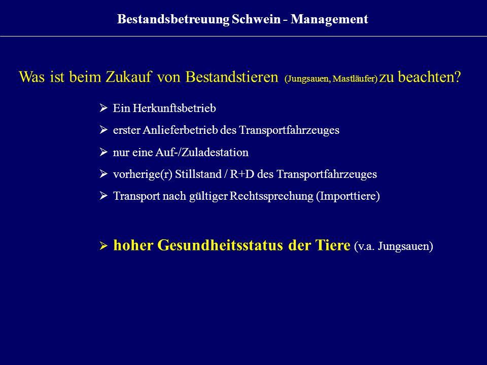 Bestandsbetreuung Schwein - Management