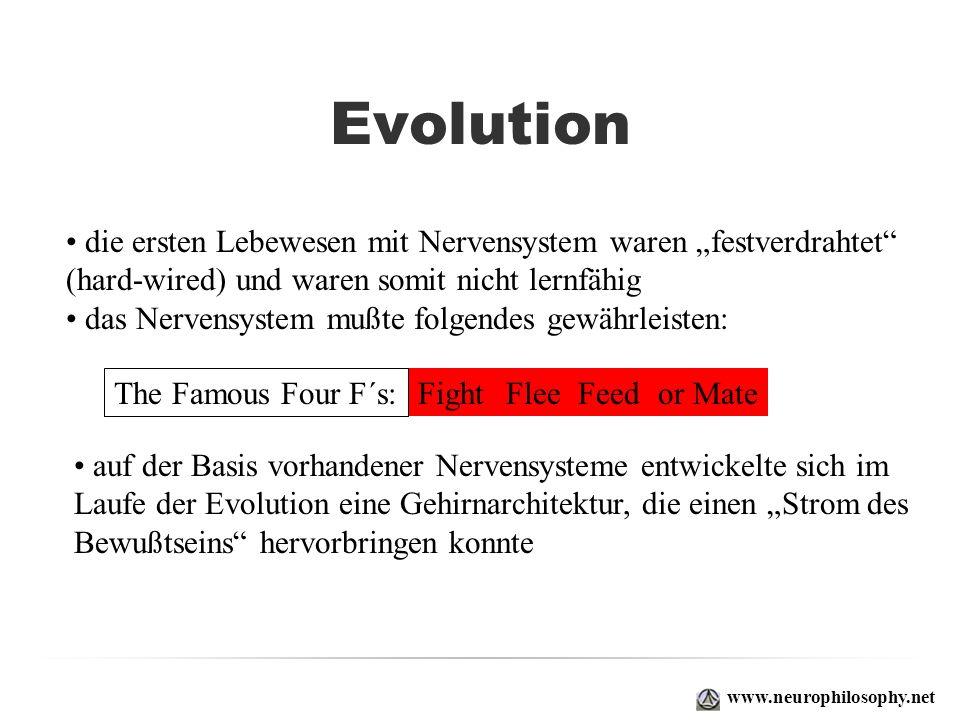 """Evolutiondie ersten Lebewesen mit Nervensystem waren """"festverdrahtet (hard-wired) und waren somit nicht lernfähig."""