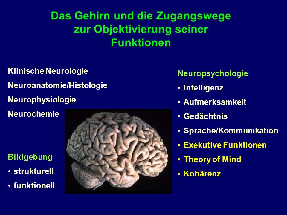Das Gehirn und die Zugangswege zur Objektivierung seiner Funktionen