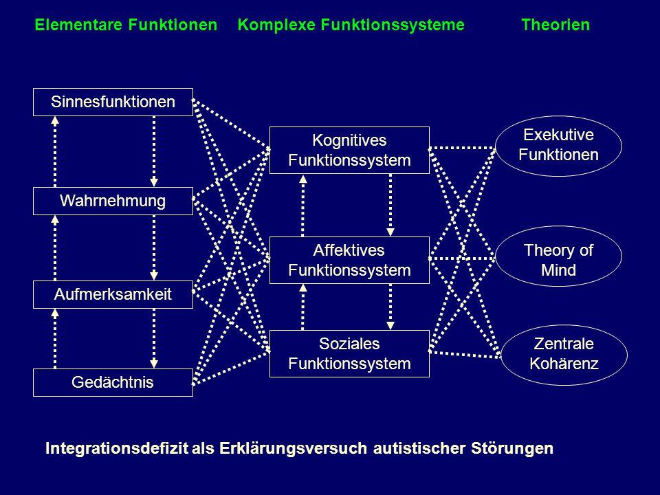 Elementare Funktionen Komplexe Funktionssysteme Theorien