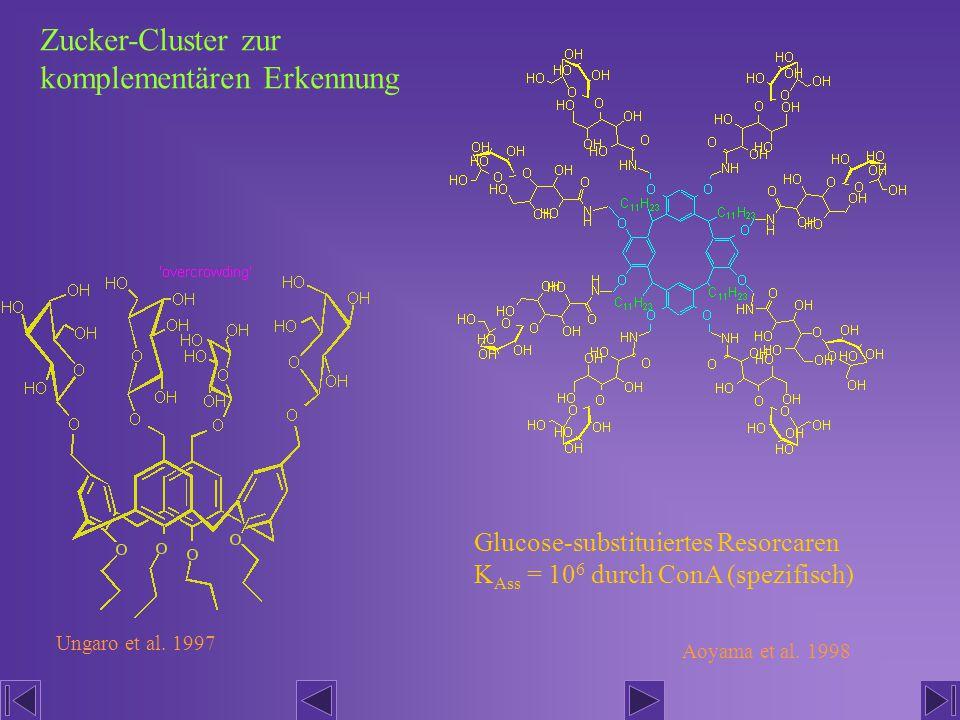 Zucker-Cluster zur komplementären Erkennung
