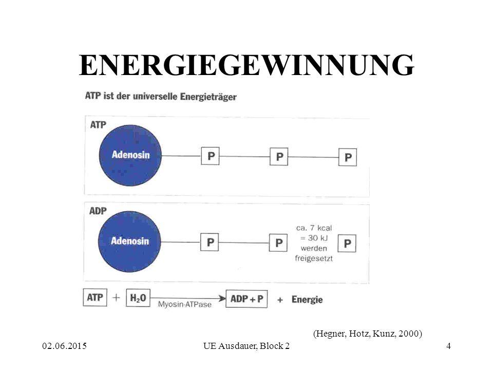 ENERGIEGEWINNUNG (Hegner, Hotz, Kunz, 2000) 16.04.2017
