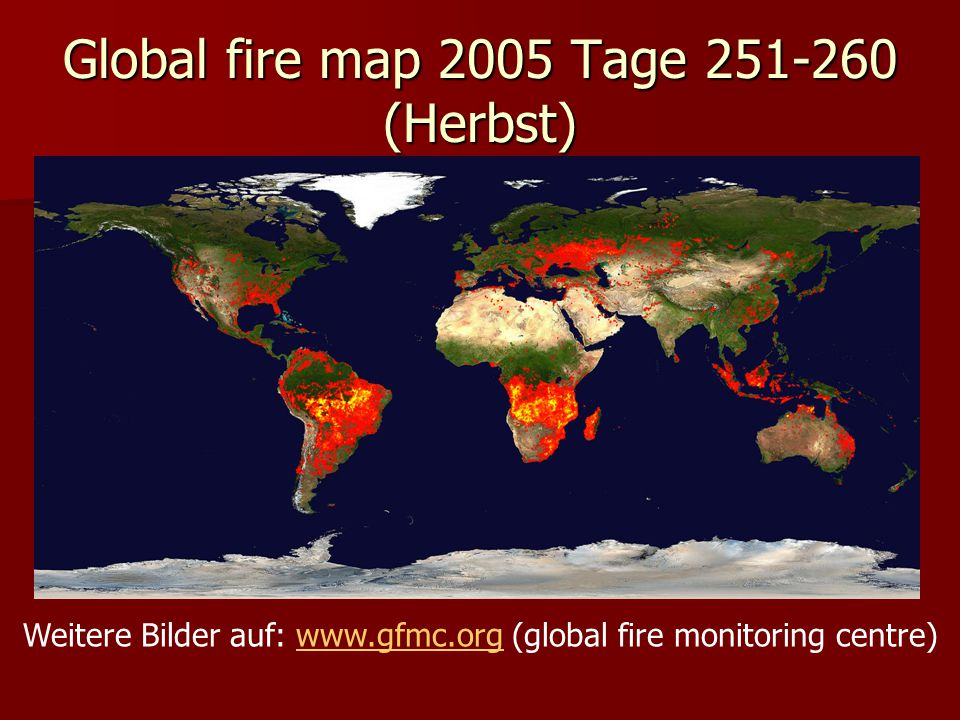 Global fire map 2005 Tage (Herbst)