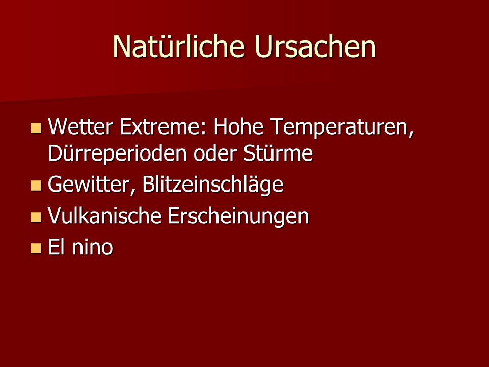 Natürliche Ursachen Wetter Extreme: Hohe Temperaturen, Dürreperioden oder Stürme. Gewitter, Blitzeinschläge.