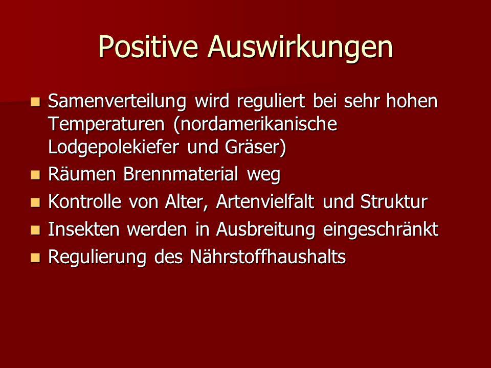 Positive Auswirkungen
