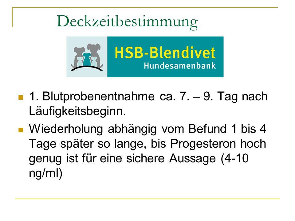 Deckzeitbestimmung 1. Blutprobenentnahme ca. 7. – 9. Tag nach Läufigkeitsbeginn.