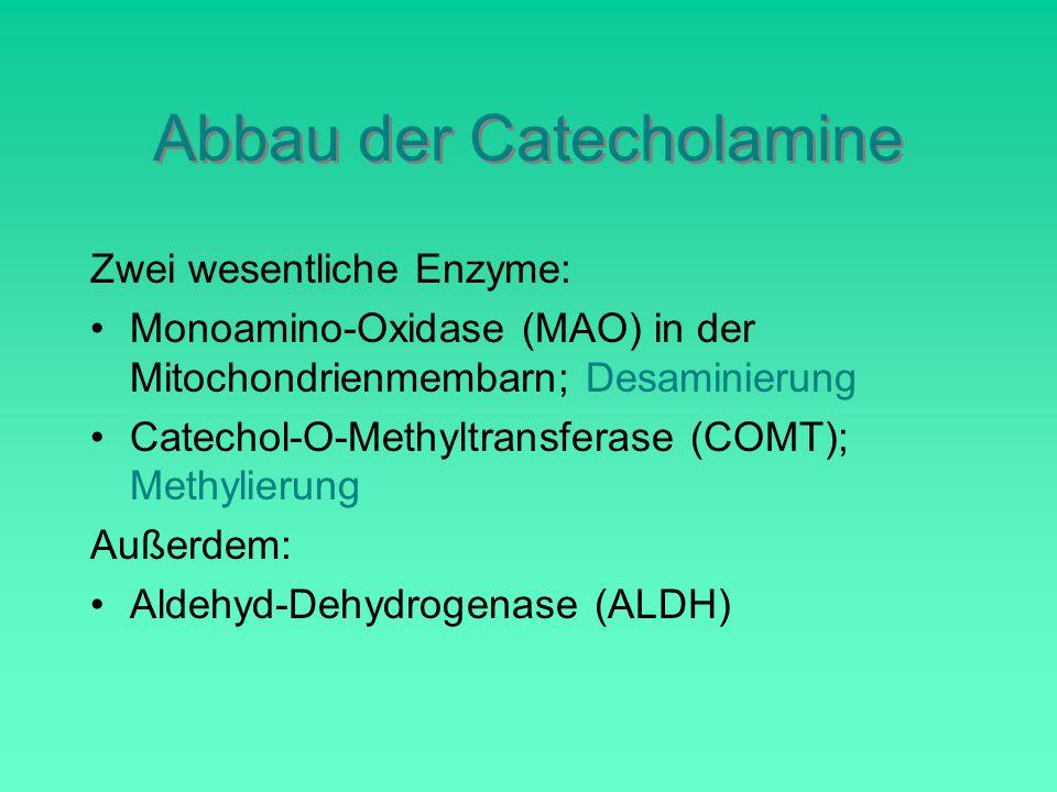 Abbau der Catecholamine