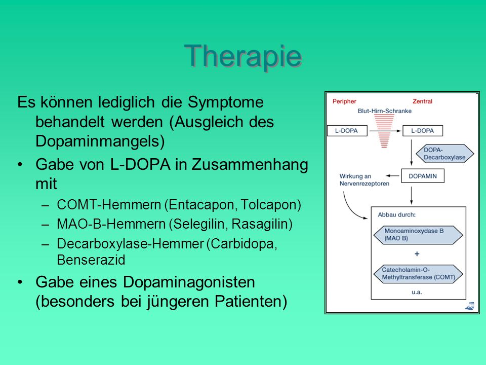 Therapie Es können lediglich die Symptome behandelt werden (Ausgleich des Dopaminmangels) Gabe von L-DOPA in Zusammenhang mit.