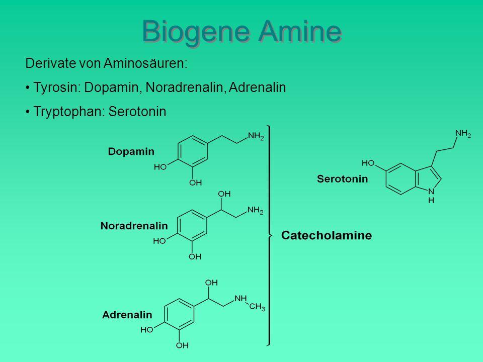 Biogene Amine Derivate von Aminosäuren: