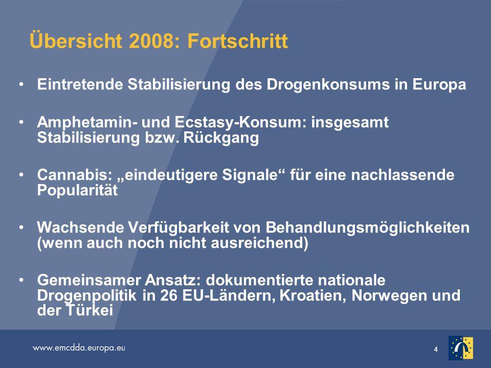 Übersicht 2008: Fortschritt